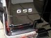 Mercedes-Benz G55 Backup Camera Integration